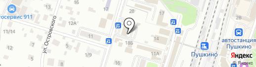 Звёздочка на карте Пушкино