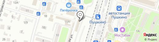 Магазин детских товаров на Лесной на карте Пушкино
