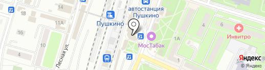 Евросеть на карте Пушкино