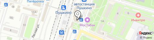Магазин дисков на карте Пушкино