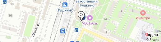 Мастерская по ремонту одежды и обуви на карте Пушкино