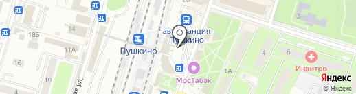 Магазин женской одежды и бижутерии на карте Пушкино