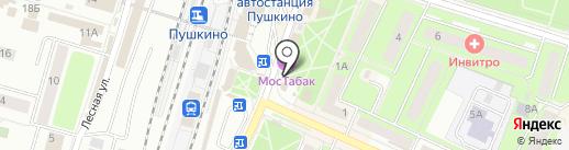 102 Далматина на карте Пушкино