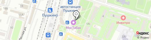 Хмельная пинта на карте Пушкино