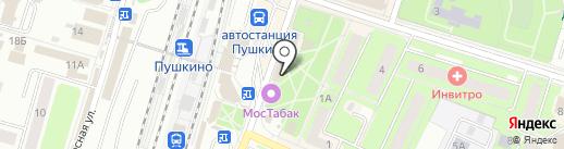 CyberPlat на карте Пушкино