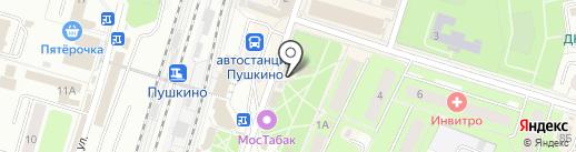 Билайн на карте Пушкино