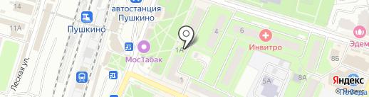 Мульти Пульти на карте Пушкино
