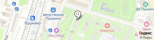 Столетник на карте Пушкино