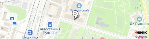 Sport Aviv на карте Пушкино