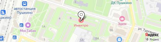 Алинор на карте Пушкино