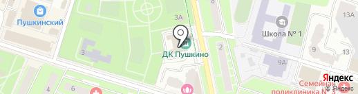Солнечный зайчик на карте Пушкино