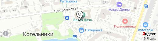 Централизованная библиотечная система на карте Котельников