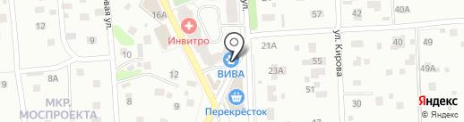 Вива на карте Пушкино
