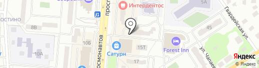 Стриж на карте Королёва