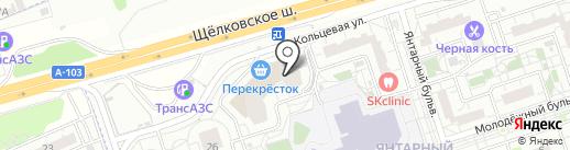 WebIndigo на карте Балашихи