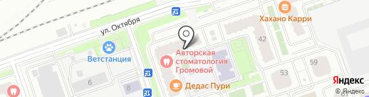 Стильная семья на карте Реутова