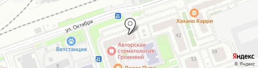 Лапки Ушки на карте Реутова