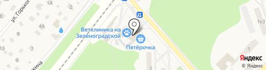 Зоомагазин на Шоссейной на карте Зеленоградского