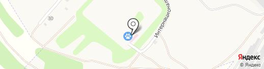 Щекинское межрайонное объединение ветеринарии на карте Киреевска
