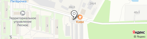 Шиномонтажная мастерская на ул. Пушкина на карте Лесного