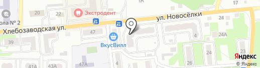 Избёнка на карте Ивантеевки