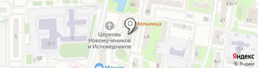 Ангелина на карте Балашихи