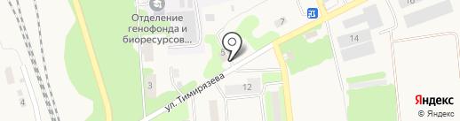 Барс на карте Михнево
