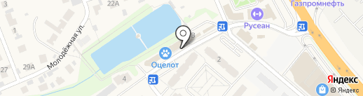 Mr.Know-All на карте Островцев