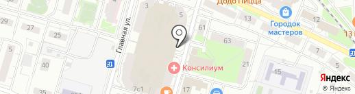 Чайка на карте Балашихи