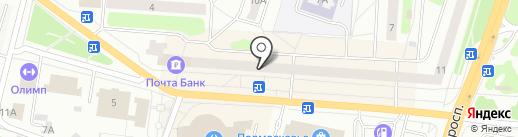 Четыре лапы на карте Щёлково
