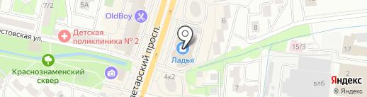 Хотёнок на карте Щёлково