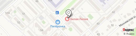 Львёнок на карте Малаховки