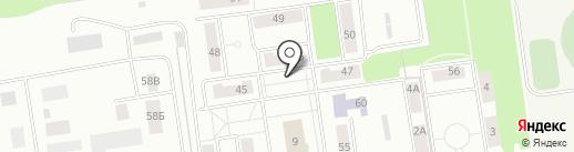 Моя курка на карте Балашихи