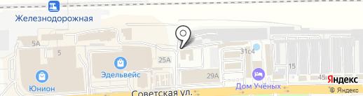 Lana lion на карте Балашихи
