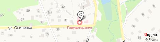 Международный Центр Медицинской Пиявки на карте Удельной