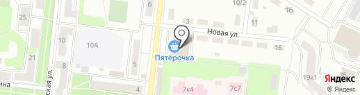 Магазин по продаже мясной продукции на ул. Новая на карте Фрязино
