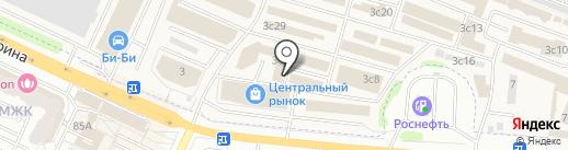 Четыре лапы на карте Жуковского