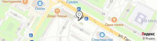 Жасмин на карте Жуковского