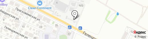 Пальма на карте Геленджика