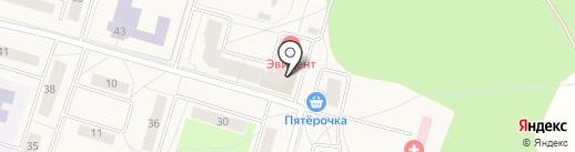 Торгово-монтажная компания на карте Биокомбината