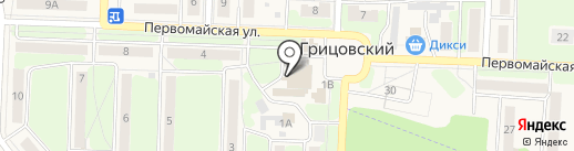 Пятёрочка на карте Грицовского