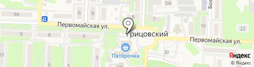 Аптека на карте Грицовского