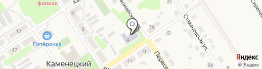 Средняя общеобразовательная школа №9 на карте Каменецкого