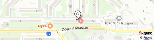 Ника на карте Новомосковска