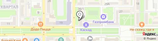 Винни-Пух на карте Новомосковска