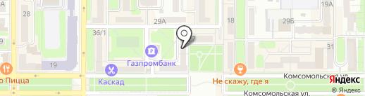 Дубки на карте Новомосковска