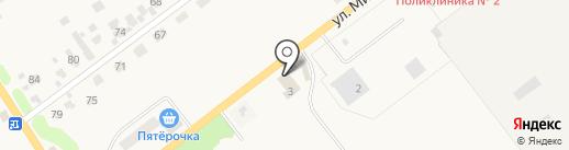 Шиномонтажная мастерская на ул. Мичурина на карте Донского