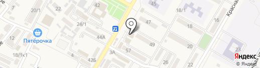 Светлана на карте Энема