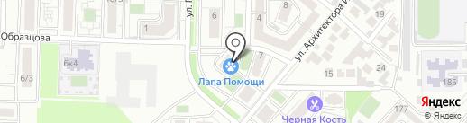 Фото Мир на карте Краснодара