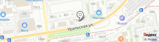 Тигрёнок на карте Краснодара